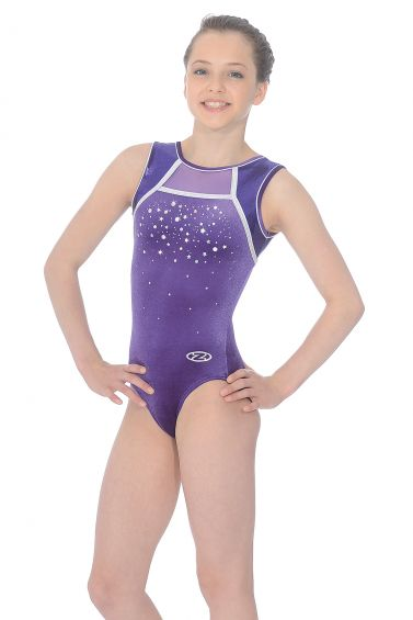 c7eded00cd6a Destiny Sleeveless Gymnastics Leotard - The Zone Z422DES